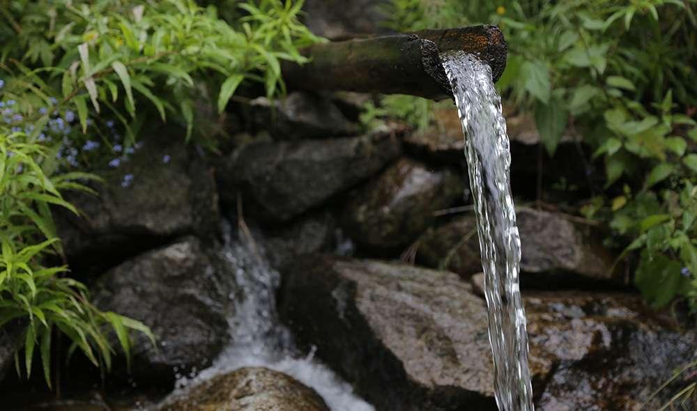 מים זורמים דרך ענף בטבע