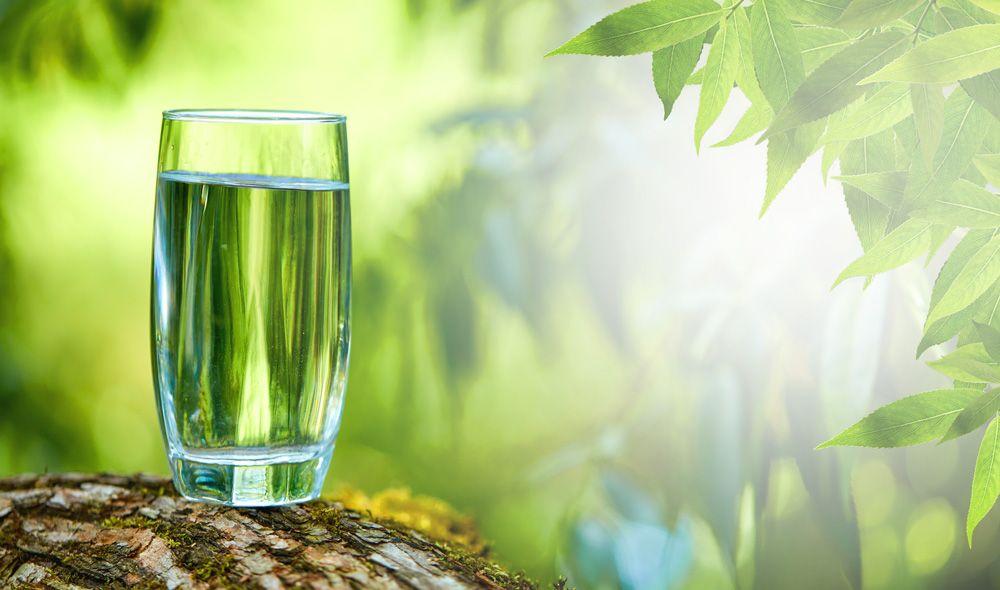כוס מים בטבע